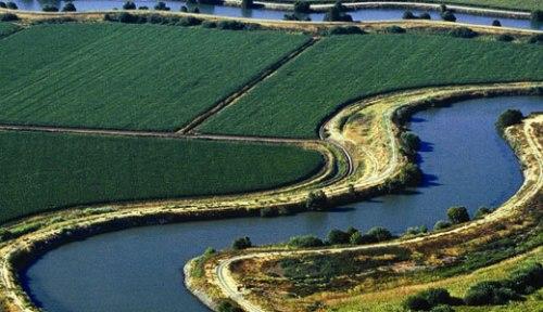 Delta Farmland