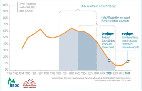 Decline of the salmon