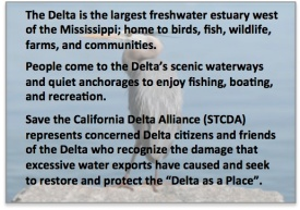 About the Delta - Intro